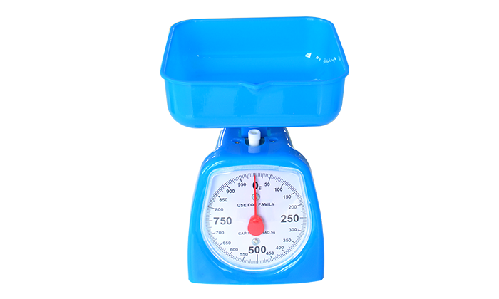 11019 Spring scale